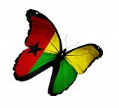 Guinea-bissau Flag Butterfly Flying, Isolated On White Background