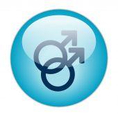 Glassy Blue Gay Icon