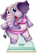 Illustration of an elephant above the weighing scale on a white background