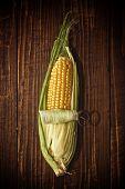 Ear Of Corn Opening