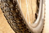 Muddy tire of a mountain bicycle