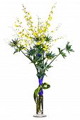 Miniature Orchids And Eryngium Flowers In Vase Isolated On White Background.