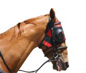 Chestnut Racehorse With Red Hood