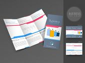 picture of newsletter  - Professional business three fold flyer template - JPG