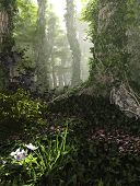 picture of hazy  - 3D computer graphics of a forest with tree trunks full of ivy - JPG