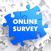 Online Survey on Blue Puzzle.