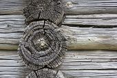Wood texture.  Fragment of old log house. Natural textured background.