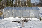 Old Plastic Greenhouse In Winter Time