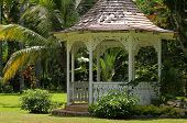 stock photo of gazebo  - Gazebo in Shaw Park Botanical Gardens - JPG