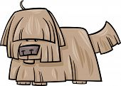 Shaggy Dog Cartoon Illustration