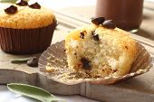 Delicious Homemade Gluten Free Muffins With Chocolate Chips