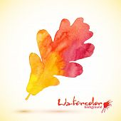 Orange watercolor painted vector oak leaf