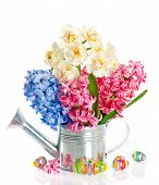 Fresh Hyacinth And Narcissus Flowers With Easter Eggs