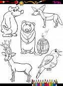 foto of nightingale  - Coloring Book or Page Cartoon Illustration of Black and White Funny Animals Characters Set for Children - JPG