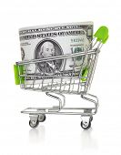 Shopping cart with US dollar isolated on the white