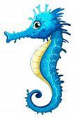 Illustration of a closeup seahorse