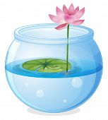 Illustration of an aquarium with a waterlily and a flower on a white background