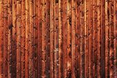 Timber background - abstract image