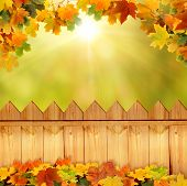 autumn  background with fence