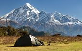View Of Mount Dhaulagiri With Tent - Nepal