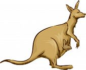 Illustration Featuring a Kangaroo Carrying its Baby on its Pouch