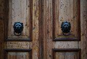 Wooden Vintage Brown Door Lion Knocks