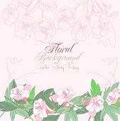 Pink floral background with pink pansies