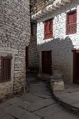 image of mustang  - Stone Paved Path in Marpa village Mustang Nepal - JPG