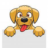 Cute Dog Banner