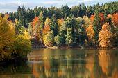 Autumn on the lake.