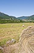 Farming Lands Of Arresa, Spain