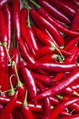 image of red hot chilli peppers  - Red hot chilli peppers in a market of London - JPG