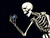 Earth And Bone 2