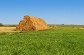 pic of hay bale  - Summer country landscape with green meadow and mow of bales of hay - JPG