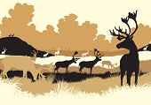picture of caribou  - EPS8 editable vector illustration of reindeer or caribou moving across a tundra landscape with all figures as separate objects - JPG