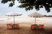 stock photo of beach hat  - White of umbrellas And beach chairs On Hat sai Kaeo is longest beach in Ko Samet island - JPG