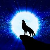 picture of moon silhouette  - Wolf howling at the moon vector illustration - JPG