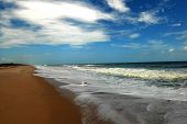 Sandy Beach Ocean