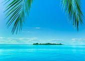 Sinalize para a ilha da fantasia
