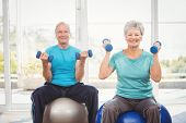 Portrait of smiling senior couple holding dumbbells while sitting on exercise ball at home poster