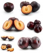 page of plums isolated on the white