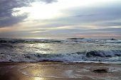 "Beach In La Jolla California ""Marine Street"""