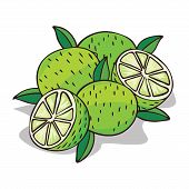 Isolate Ripe Lime Fruit On White Background. Close Up Clipart With Shadow In Flat Realistic Cartoon  poster
