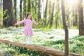 Child In Spring Park With Flowers poster