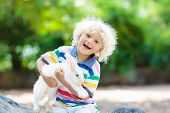 Kids Play With Farm Animals. Child Feeding Domestic Animal. Mother, Little Boy And Girl Hold Wild Bo poster