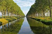 stock photo of damme  - The Damme Canal in the Belgian province of West Flanders - JPG