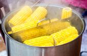 Steamed Corn With A Wooden Plug In A Cooking Saucepan, Street Food. Boiled The Corns With A Bit Of S poster