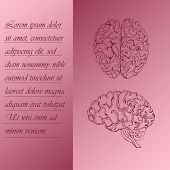 Two Section Poster About Human Brain With Place For Text. Hand Drawn Human Brain. Human Anantomy Vec poster