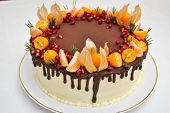 Isoalted Birthday Cake With Chocolate Icing And Citrus Decoration. Tangerine Cake, With Pomegranate  poster