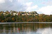 Decoy Country Park